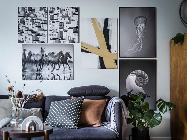 BILD БІЛЬД Постер, ракушки та медузи, 50x70 см