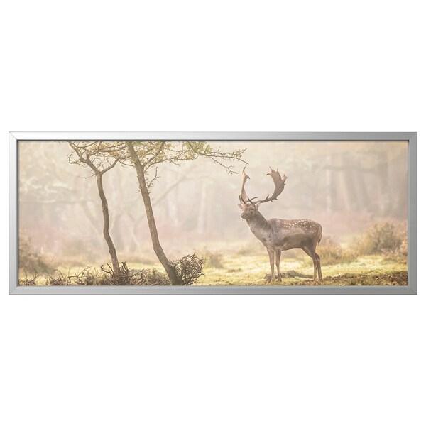 BJÖRKSTA БЬЙОРКСТА Картина з рамкою, Олень на галявині/колір алюмінію, 140x56 см