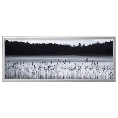 BJÖRKSTA БЬЙОРКСТА Картина з рамкою, Озеро Вудленд/колір алюмінію, 140x56 см