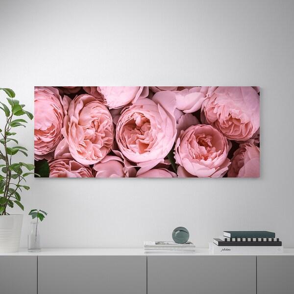 BJÖRKSTA БЬЙОРКСТА Картина з рамкою, Рожеві піони/колір алюмінію, 140x56 см