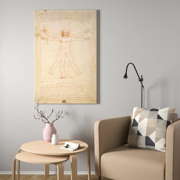 BJÖRKSTA БЬЙОРКСТА Картина з рамкою, вітрувіанська людина/колір алюмінію, 78x118 см