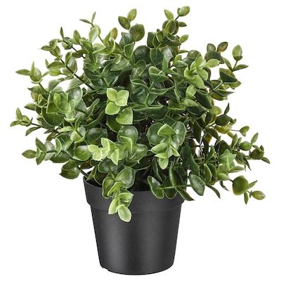 ФЕЙКА штучна рослина в горщику  материнка звичайна 9 см 22 см