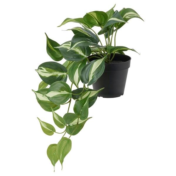 FEJKA ФЕЙКА Штучна рослина в горщику, для приміщення/вулиці золотистий потос, 12 см
