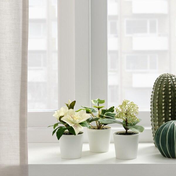 FEJKA ФЕЙКА Штучна рослина в горщику+горщ, н3шт, для приміщення/вулиці/зелений/білий, 6 см