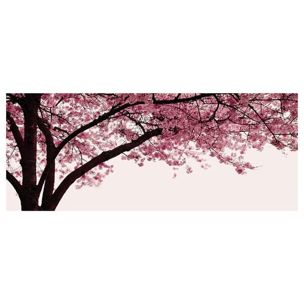 PJÄTTERYD ПЙЕТТЕРЮД Картина, квітуче дерево вишні, 140x56 см
