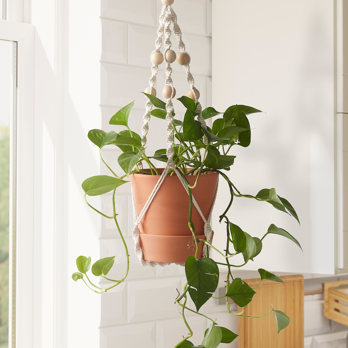 Anvandbar Hanging Plant Holder Hanging Natural Ikea