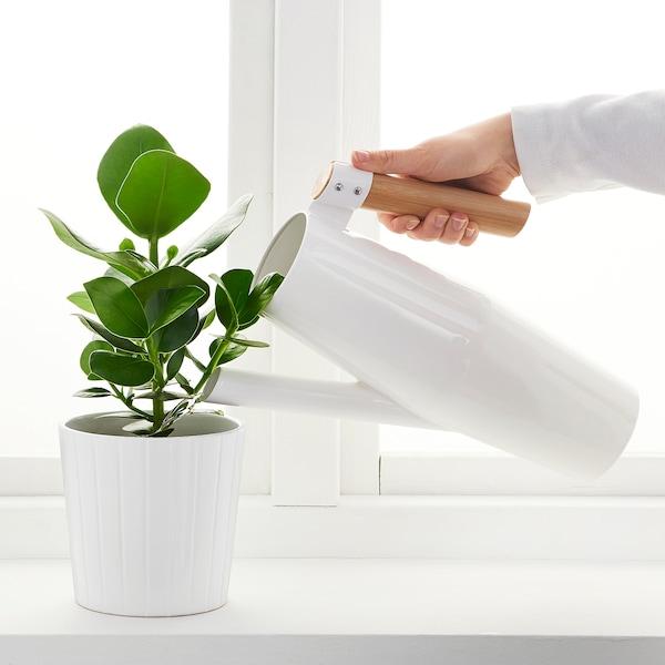 BITTERGURKA Watering can, white, 68 oz