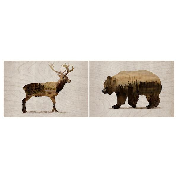 "BJÖRNAMO Picture, set of 2, Wild animals II, 11 ¾x7 ¾ """