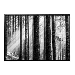 BJÖRKSTA picture and frame, Sunbeams, black