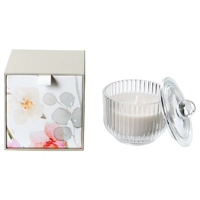 BLOMDOFT Scented candle in glass, Gladiolus/gray, 3 ½ ""