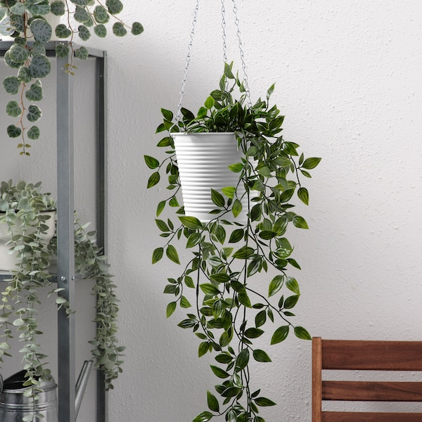 CASHEWÄPPLE Hanging planter, indoor/outdoor white, 4 ¾ ""