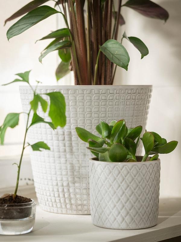 """CHIAFRÖN Plant pot, white, 3 ½ """""""