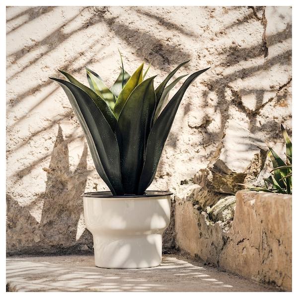 "CITRONSYRA plant pot indoor/outdoor/white 4 ¾ "" 5 ½ "" 4 ¾ "" 5 """