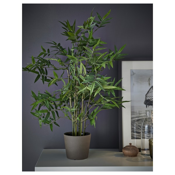 FEJKA Artificial potted plant, indoor/outdoor bamboo, 4 ¾ ""