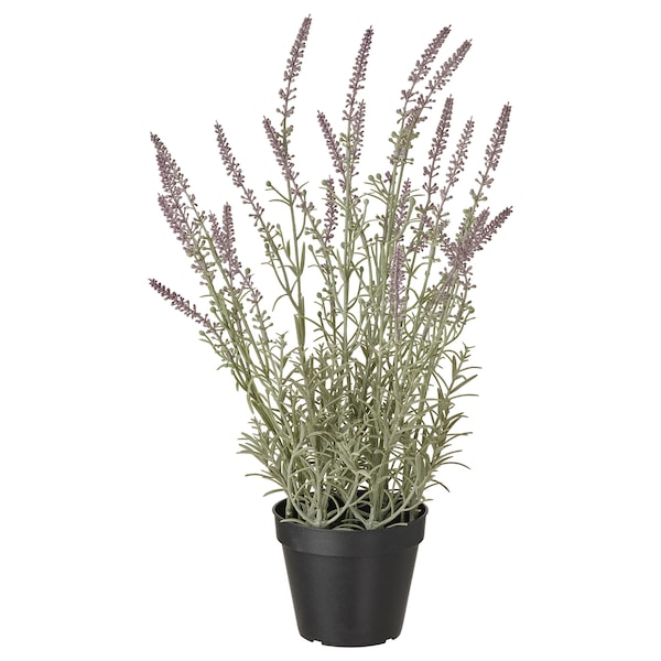 FEJKA Artificial potted plant, indoor/outdoor/lavender lilac, 4 ¾ ""