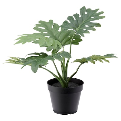 FEJKA Artificial potted plant, indoor/outdoor philodendron-leaf, 4 ¾ ""