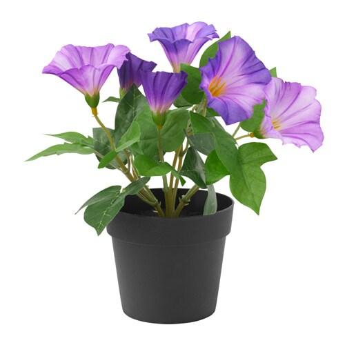 Fejka artificial potted plant ikea for Ikea fleurs artificielles