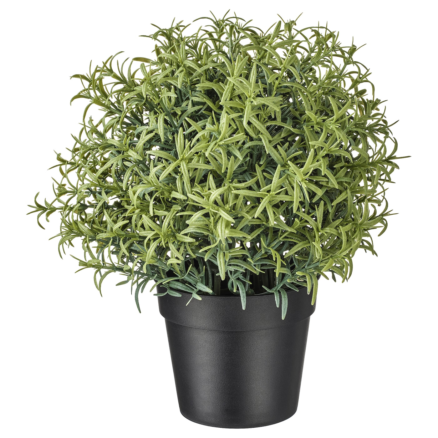 Fejka Artificial Potted Plant Rosemary Ikea