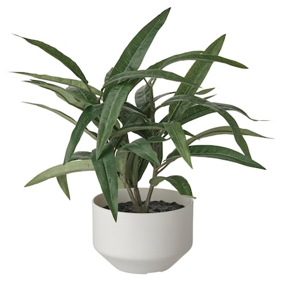 FEJKA Artificial potted plant with pot, indoor/outdoor Nerium, 3 ½ ""