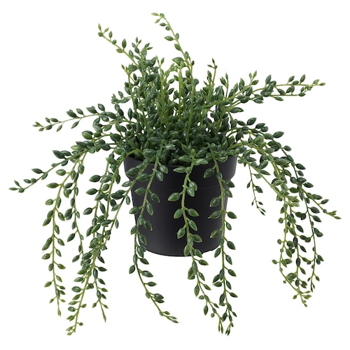 """FEJKA artificial potted plant indoor/outdoor String of beads 3 ½ """" 7 ¾ """""""