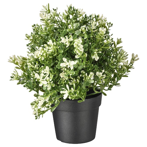 """FEJKA artificial potted plant thyme 3 ½ """" 8 ¾ """""""
