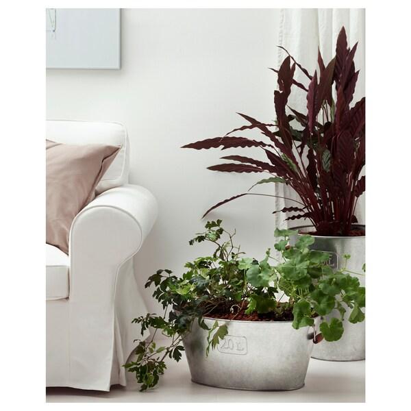 """GRÄSLÖK Plant pot, indoor/outdoor/galvanized, 12 ½ """""""