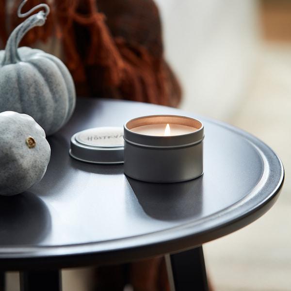 "HÖSTKVÄLL Scented candle in metal cup, Cedar & magnolia/silver color, 2 """