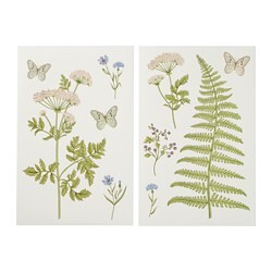 KINNARED decorative stickers, Fern & flowers