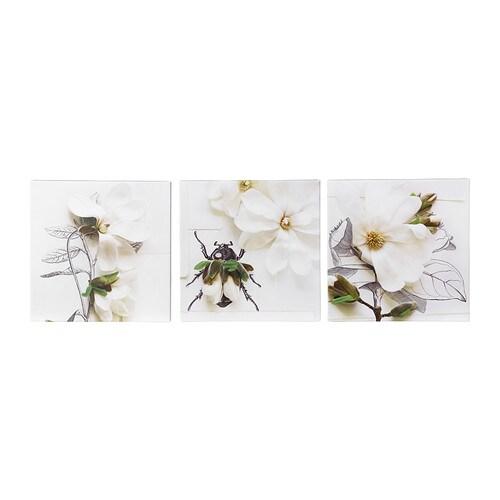 KLÖVSJÖ Picture, set of 3 , magnolia pen and ink Width: 9 ¾