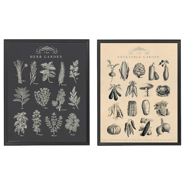 "KNOPPÄNG Frame with poster, garden, 16x20 """