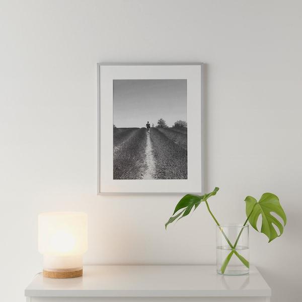 """LOMVIKEN Frame, aluminum, 16 ¼x20 """""""