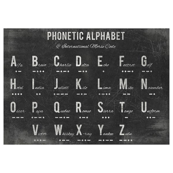 "PJÄTTERYD Picture, Phonetic alphabet, 39 ¼x27 ½ """