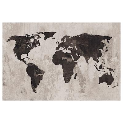 """PJÄTTERYD Picture, World map III, 46 ½x30 ¾ """""""