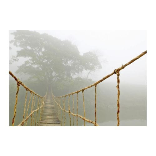 ikea jungle journey rope bridge picture photo art canvas
