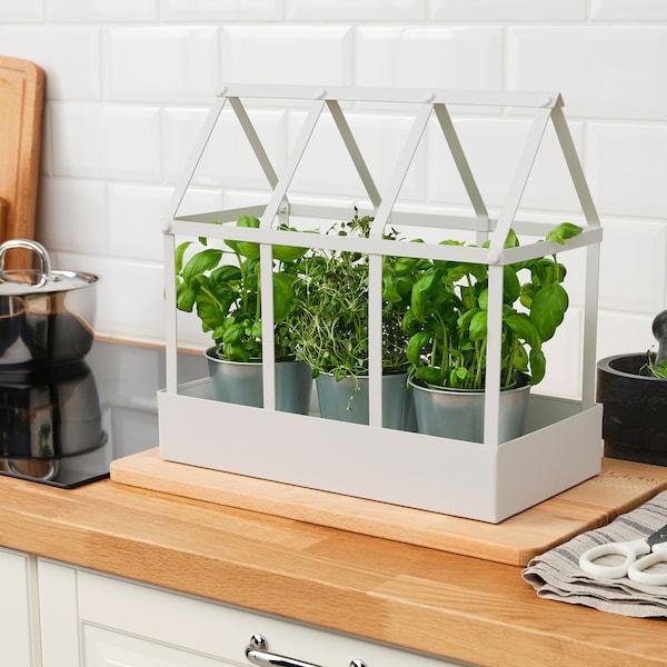 "SENAPSKÅL Decoration greenhouse, indoor/outdoor white, 13 ½ """