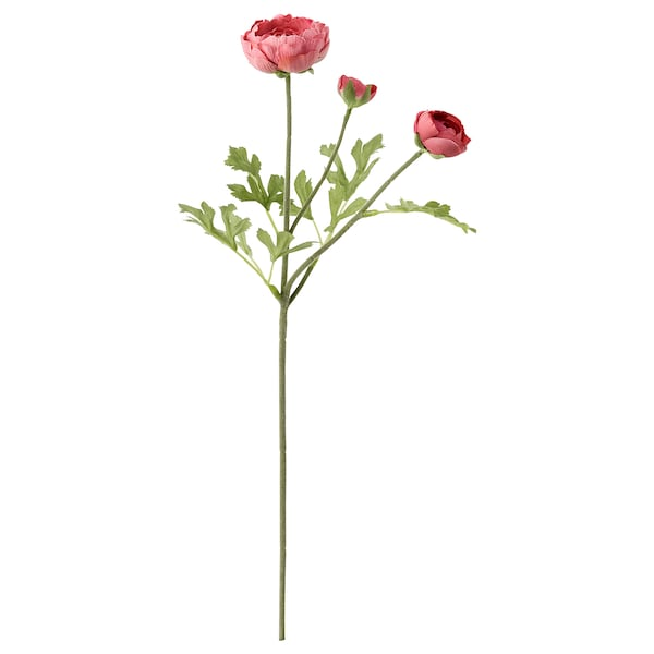 SMYCKA Artificial flower, Ranunculus/dark pink, 20 ½ ""