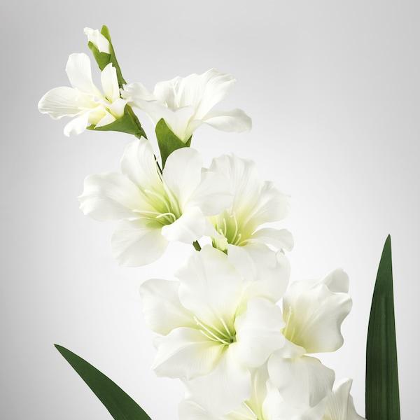 "SMYCKA artificial flower Gladiolus/white 39 ¼ """