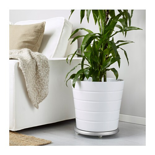 SOCKER Plant stand on wheels IKEA Plant stand on wheels makes moving large plant pots easier.  Galvanized for rust resistance.