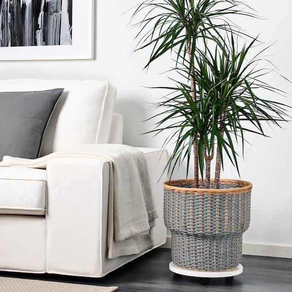 """STENBÄR Plant pot, gray, 12 ½ """""""