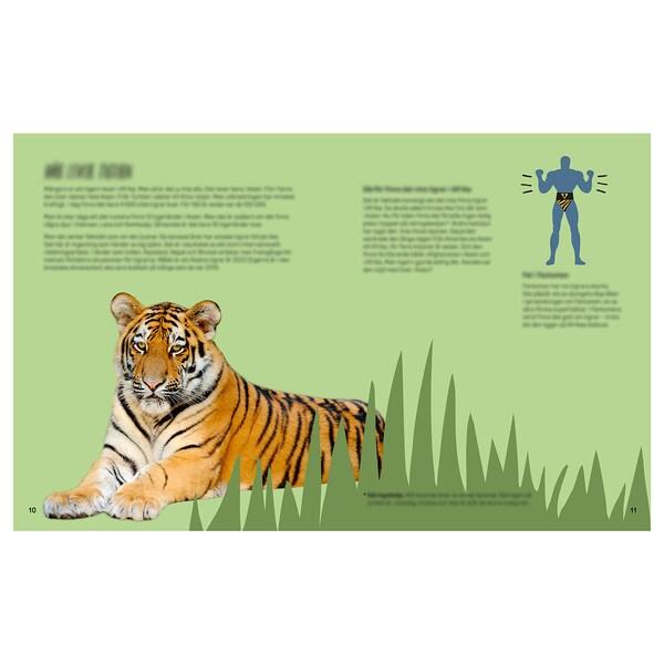 URSKOG Book, Meet the tiger