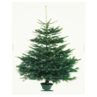 VINTER 2020 Pre-cut fabric, christmas tree white/green, 59x87 ""
