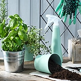 Go to outdoor plant pots & plants